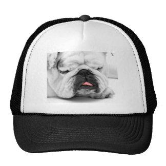 Camiseta del amante del perro del dogo el dormir gorras