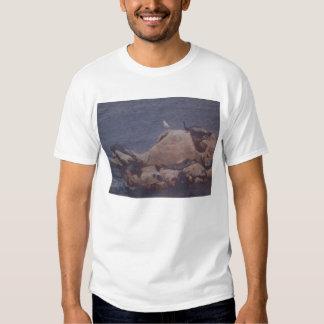 Camiseta del baño de Monterey Sun Remeras