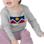 Camiseta del bebé con la bandera de la ciudad de D