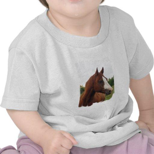 Camiseta del bebé de la foto del caballo de proyec