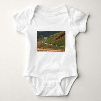 Camiseta del bebé del bloque de camino mameluco de bebé