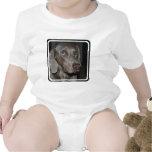Camiseta del bebé del perro de Weimaraner