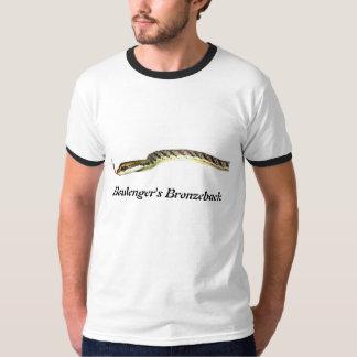 Camiseta del campanero de Bronzeback de Boulenger