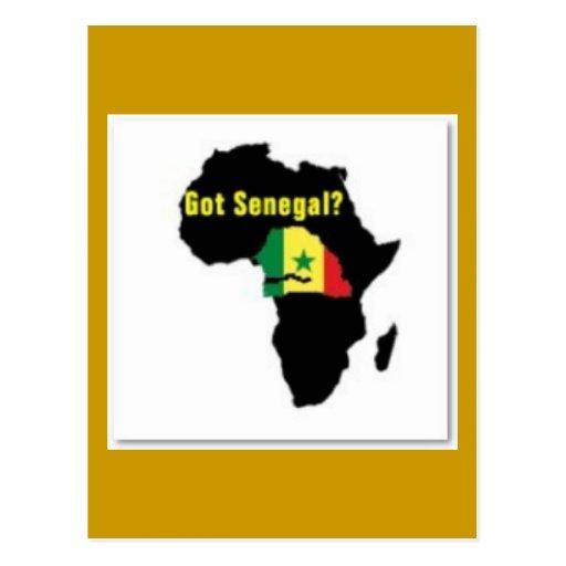 Camiseta del escudo de armas de Senegal y etc Tarjetas Postales