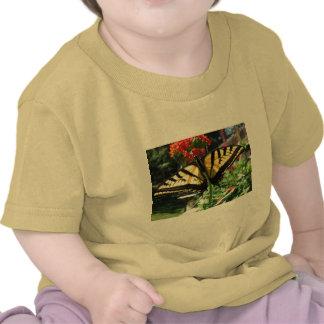 Camiseta del este del bebé de la mariposa de Swall