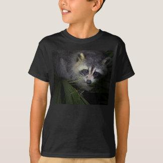 Camiseta del mapache
