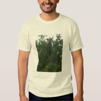 Camiseta del mapache polera