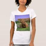 Camiseta del Montaña-Ganado