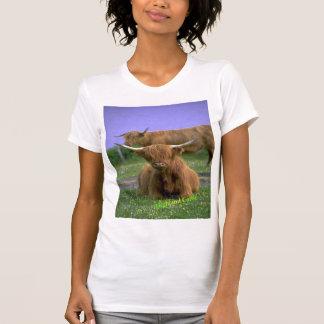Camiseta del Montaña-Ganado Playera