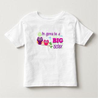 Camiseta del niño de la hermana grande camisas