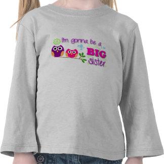 ¡Camiseta del niño de la hermana grande!