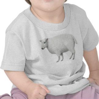Camiseta del niño de las ovejas
