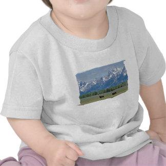 Camiseta del niño del búfalo de Teton