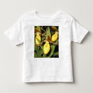 Camiseta del niño del deslizador de señora playera