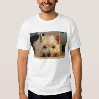 Camiseta del oeste linda del perro de Terrier de l Playeras