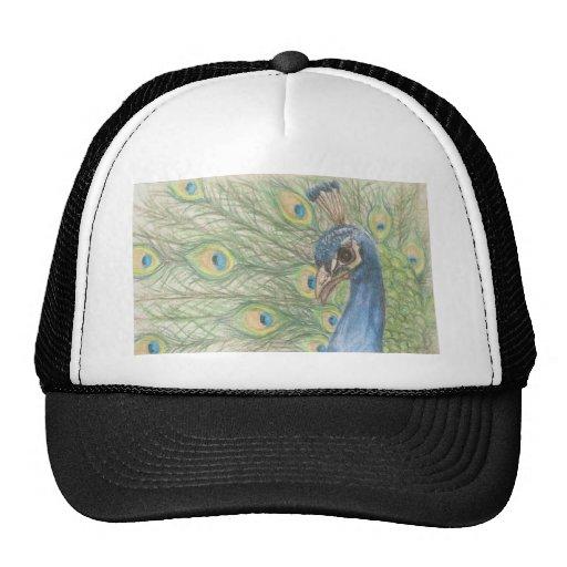 Camiseta del pavo real gorro
