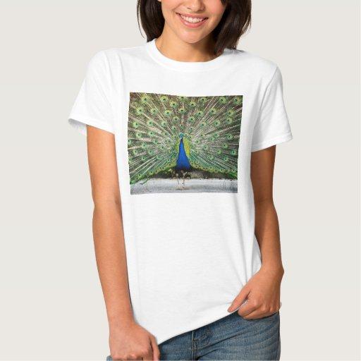 Camiseta del pavo real playeras