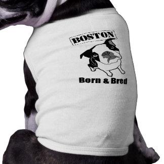 Camiseta del perro de Boston Terrier Camisetas De Perro