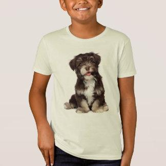Camiseta del perro de perrito de Havanese del amor