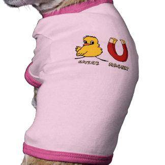 Camiseta del perro del imán del polluelo camisa de mascota