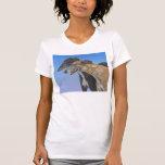 Camiseta del perro del rescate del galgo