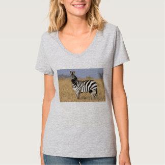 Camiseta del poema de las cebras y de los caballos polera