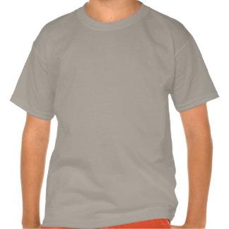 Camiseta del Polivinílico-Algodón de Hanes de la