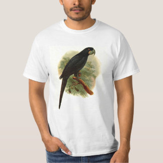Camiseta del valor de Anadorhynchus Purpurascens
