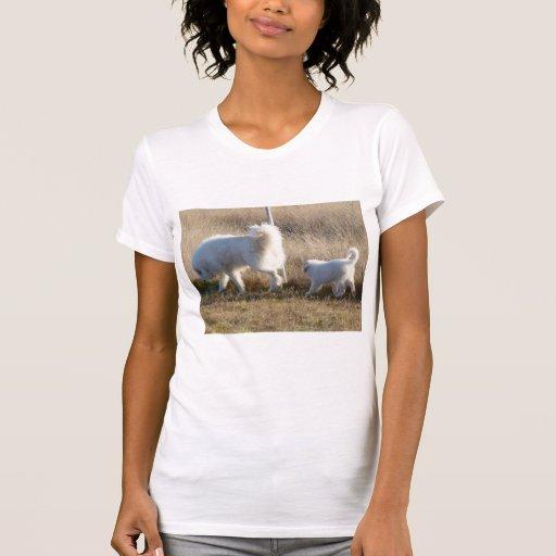 Camiseta - en patrulla