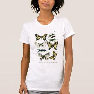 Camiseta europea de la placa de mariposas I