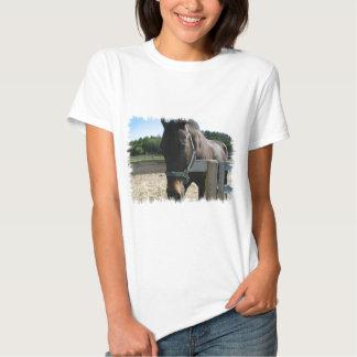 Camiseta excelente de las señoras del caballo de remera