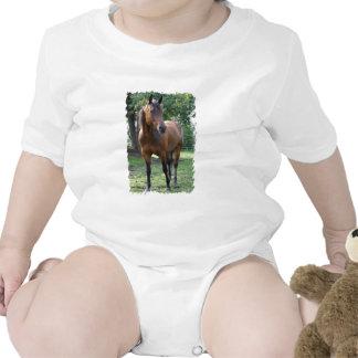 Camiseta excelente del bebé del caballo de la