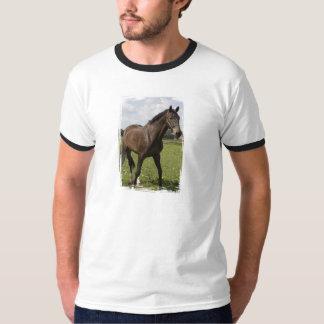 Camiseta excelente del campanero del caballo playeras