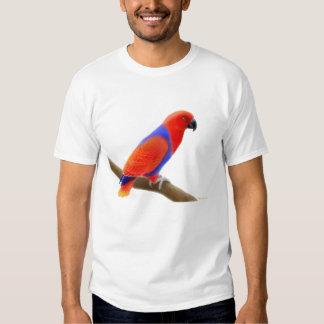 Camiseta femenina del loro de Eclectus Polera