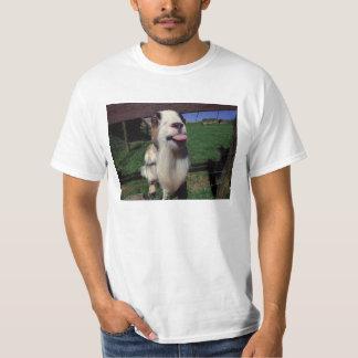 Camiseta fresca de la cabra poleras