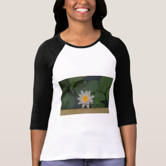 Camiseta - fuente y charca de Lotus, chalet de Poleras