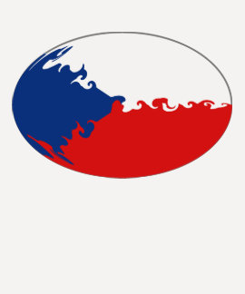 Camiseta Gnarly de la bandera de Czechia Remera