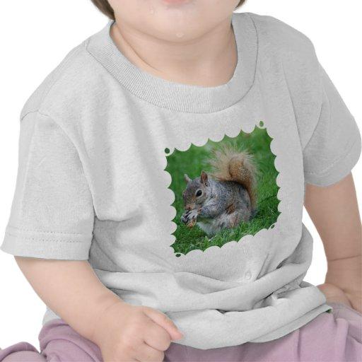 Camiseta gris del bebé de la ardilla