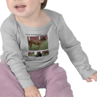 Camiseta infantil del bebé del caballo de raza