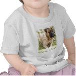 Camiseta inglesa del bebé del mastín