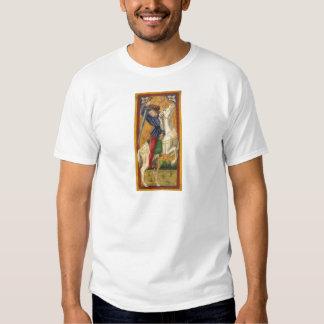 Camiseta italiana del caballero poleras