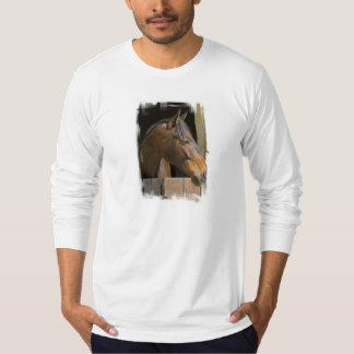 Camiseta larga de la manga de los hombres remeras
