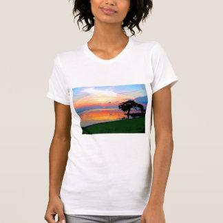 Camiseta menuda de las señoras del derramamiento