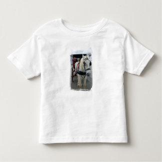 Camiseta mística del niño del caballo playeras