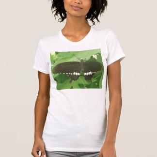 Camiseta mormona común de la mariposa remera