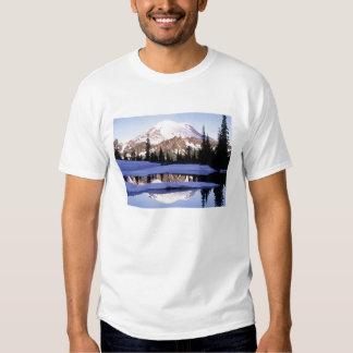 Camiseta Mt Rainer Camisas