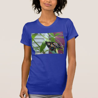 Camiseta negra de la mariposa de Swallowtail