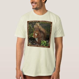 Camiseta orgánica para hombre de la ardilla roja polera