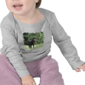 Camiseta oscura del niño del caballo de bahía