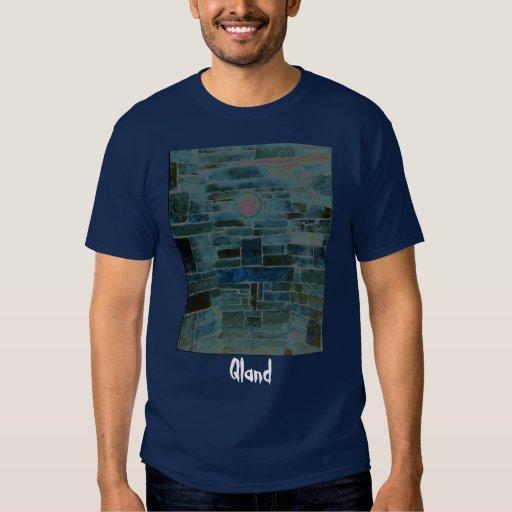 Camiseta oscura para hombre - modificada para remera